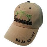 주문 로고 Bb169를 가진 단단한 모자