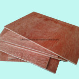 Madera contrachapada de la suposición del roble rojo del grado de la base BB/CC del álamo para los muebles