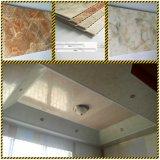Painel de parede do PVC de Decoratiove da casa e painel de teto DC-74