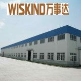 Wiskind en acier du bâtiment de taille différente