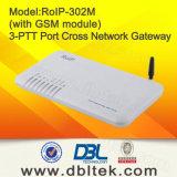 De Gateway RoIP 302m van VoIP de DwarsGateway van het Netwerk