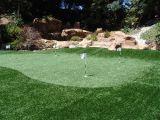 人工的なゴルフコースの総合的な泥炭の草