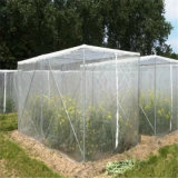 Filet de protection de l'insecte de la Chambre de l'Horticulture