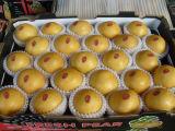Les Chinois Shandong Fresh-Frozen Ya poire de la Couronne