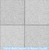 Flamed barata de granito branco G603 para lajes de engenharia/Quadros