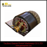 2kw Generator Copper Wire Stator와 Rotor (GGS-2.0MT)
