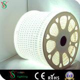 Uso dell'indicatore luminoso del LED SMD (dell'interno adatto/esterno)