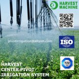 Sistema concentrare di irrigazione a pioggia del perno per lo spruzzatore di irrigazione di agricoltura