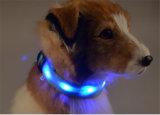 Cão Collor do Recharge do USB do diodo emissor de luz do cão do colar de cão dos produtos novos 2016