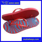Sandalo semplice di stile del PE della stampa della banda per la donna (14E024)