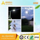 jardín al aire libre 30W que enciende la luz de calle solar del LED con el panel solar 60W