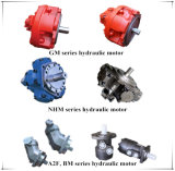 Hydraulische Motor