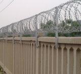 Колючая проволока используемая для поля обнесла забором воискаа и тюрьма