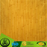 Papel decorativo da grão de madeira resistente do risco para a madeira compensada