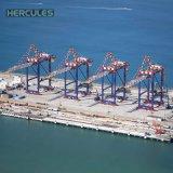 يجعل في الصين بعيد عن الشّاطئ ميناء مدخل مرفاع في مخزون