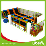 Price poco costoso Trampoline e Children Dodgeball Park