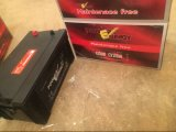 batterie de voiture acide de Freelead de la maintenance 12V200ah