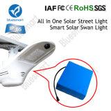 80W 14400LM Bridgelux Iluminação Solar com alta qualidade