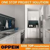 Oppeinモジュラーオーストラリアのプロジェクトの組み込みのラッカー木の食器棚(OP14-L02)