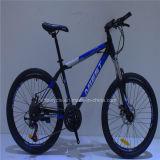 Aluminiumlegierung-Gebirgsfahrrad des heißen Verkaufs-kühles MTB des Fahrrad-26*