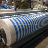 Wasserdichtes grünes PET beschichtete gesponnene Plane in Rolls