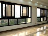 Ventana de desplazamiento económica con el solo vidrio (CL-W1006)