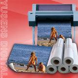 260GSM Satin RC Inkjet Impresora de inyección de tinta de gran formato