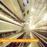 ナイジェリアの養鶏場のためのHのタイプ熱い電流を通された自動層の鶏のケージ
