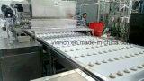 Einschieben des Maschinen-Biskuit-Maschinen-schokoladeüberzogenen Eibisches, der auf Biskuit (JXJ1000) abgibt mit Cer ISO9001