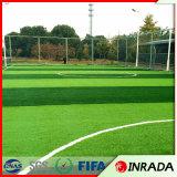 フットボール競技場のためのPupularそして良質60mmの人工的な草