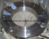 炭素鋼およびステンレス鋼の通されたフランジ