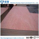 E0/E1/E2 Bintangor Grade/Okoume/crayon de contreplaqué de cèdre pour meubles