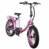 Le mini type E fait du vélo la bicyclette se pliante électrique des vélos 2018 36V 250W E de gros pneu avec la batterie au lithium