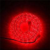 13mm Cordon LED lumière rouge LED Haute luminosité 220V