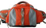 Nuovo sacchetto della cinghia del pacchetto della vita di svago di sport di corsa delle donne di modo