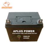 Nenhuma manutenção Calcuim Bateria de chumbo-ácido 12V24ah para pequenas motor