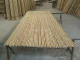 Heißer Verkaufs-Bambusstöcke mit Qualität und bestem Preis