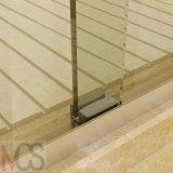 Fabricante profissional de alta qualidade chuveiro porta de vidro com Duche
