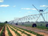 Pivot agricole de centre de système d'irrigation de machine d'arroseuse agricole en gros