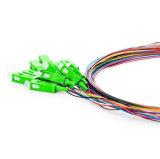 SC/APC SM 12 de Optische Vlecht van de Vezel van Kleuren (12 vezelvlecht)