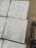 中国のG688花こう岩のSlabs&Tilesの灰色花こう岩Flooring&Walling