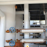 이용된 식용유 Biodiesel 제조자 Biodiesel 플랜트에게서 만들어지는 Bd100 Biodiesel