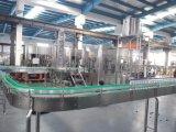 Petite ligne de production à la machine de remplissage à chaud de jus de bouteille