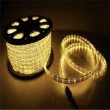 2018 Corde IP65 Lampe à LED témoin jaune de la corde de décoration de variole de la lumière de la corde lumière 110V 11mm