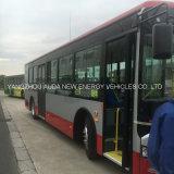 판매를 위한 호화스러운 전기 버스 관광 버스 학교 버스