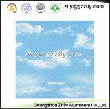 Comitato di soffitto decorativo di stampa del rivestimento del rullo per materiale da costruzione - Enkianthus cinese