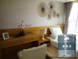 Vernice bianca di legno del rivestimento della mobilia dell'iniettore di Nc