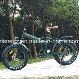 [350و] إطار العجلة سمينة درّاجة كهربائيّة مع [ديسك برك] ([رسب-507])