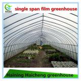 단 하나 경간 농업 온실 유형 및 큰 크기 플라스틱 갱도 온실