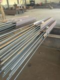 Estructura de acero galvanizada o prepintada para la construcción